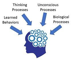 Case Study Method in psychology Clinical Method Modern Psychology basic2019